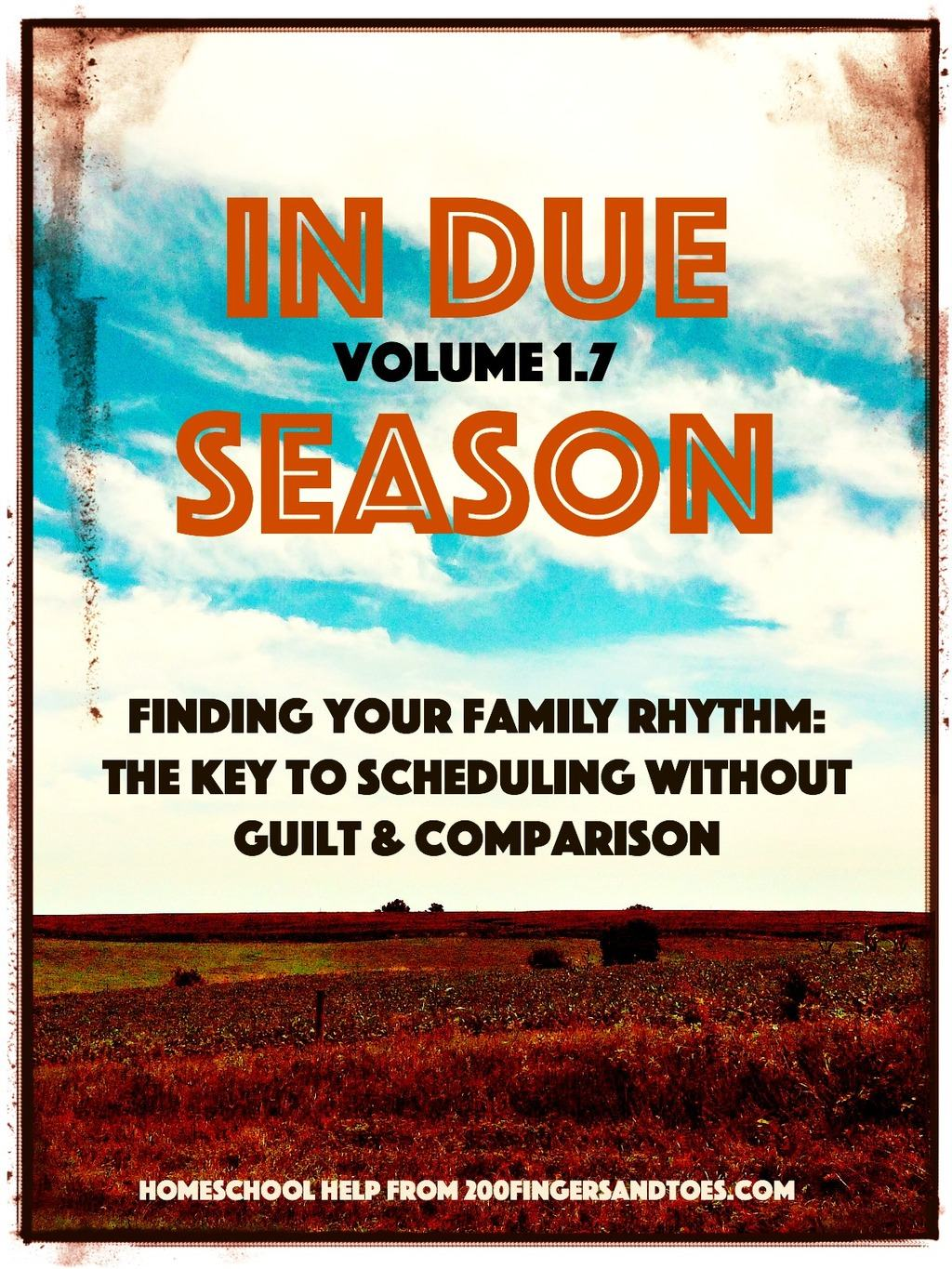 Find your family's personal rhythms and schedule without comparison or guilt | In Due Season Volume 1.7