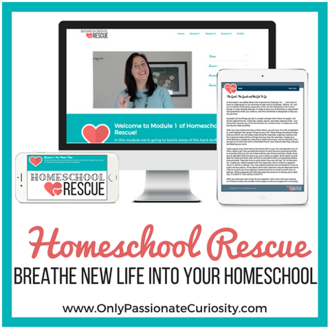 It's Time To Get The Kinks Out of Your Homeschooling Armor {Review}